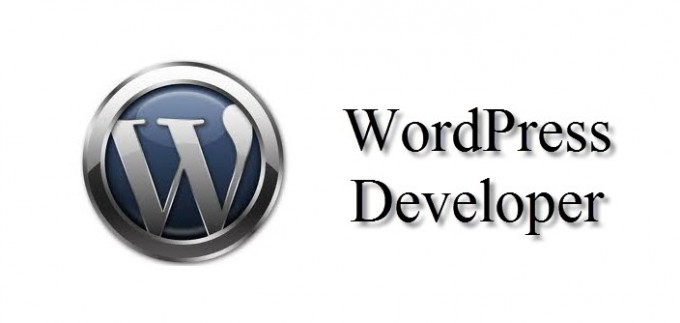 WordPress Developer Review