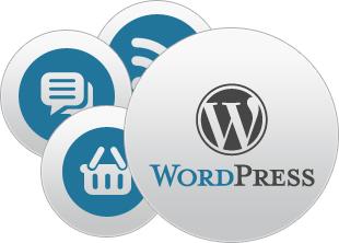 Becoming a Top WordPress Developer